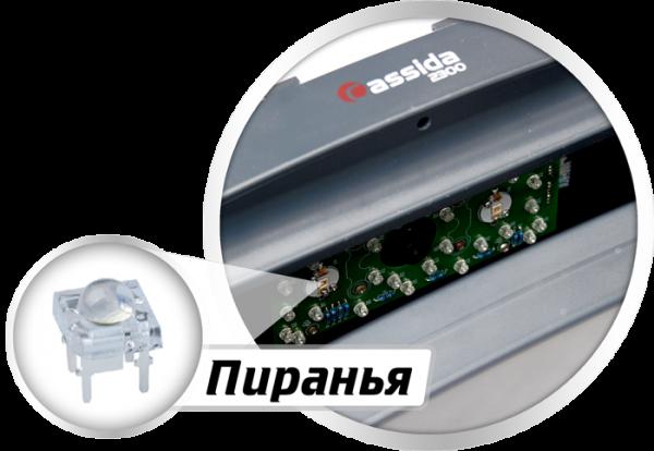 Универсальные просмотровые детекторы Cassida 2300 DA, Cassida 2300 LA, Cassida 2300 D купить в Москве по выгодной цене